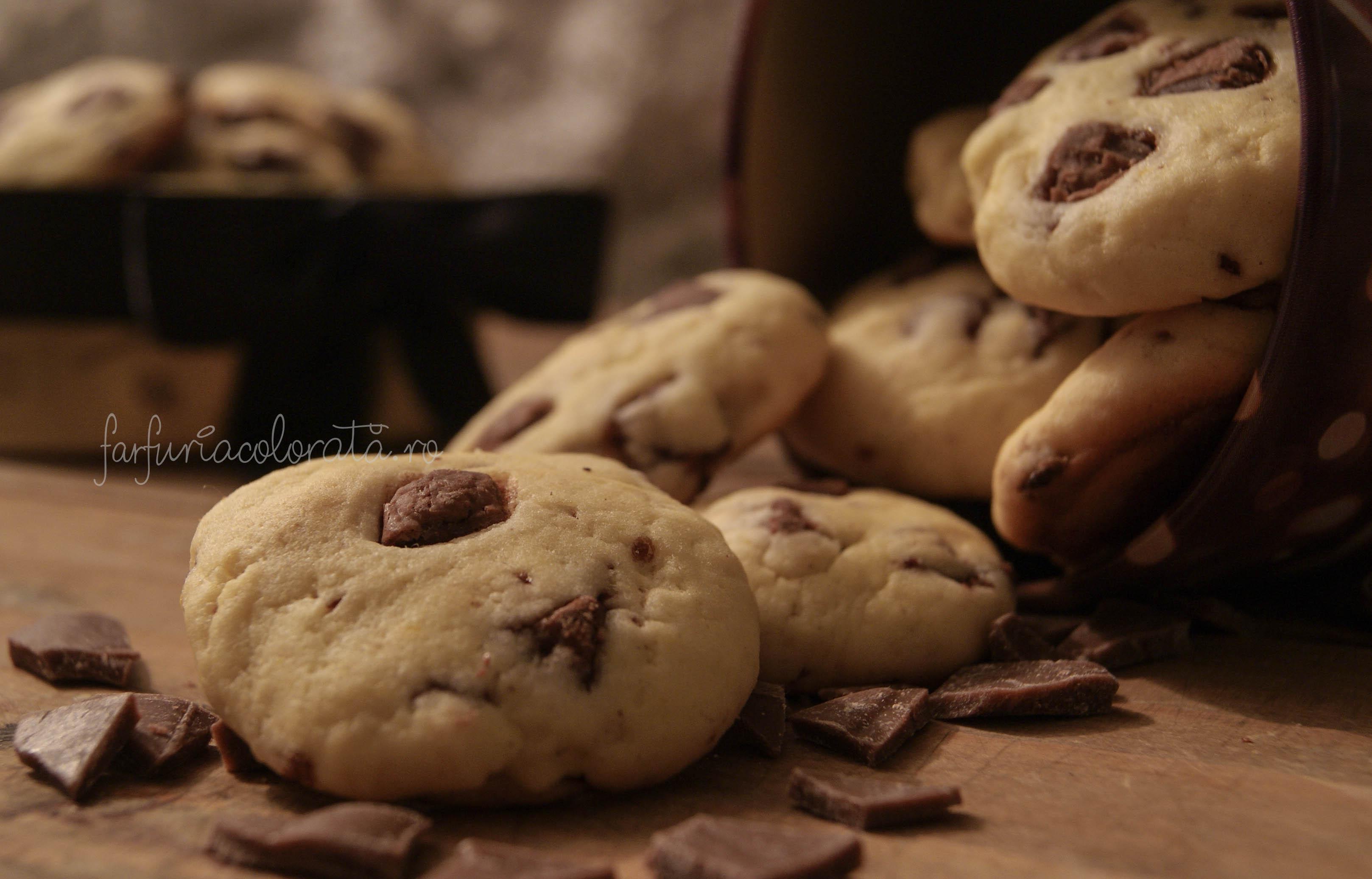 cookies fursecuri cu ciocolată