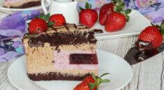 tort cu mousse de zmeură, ciocolată și jeleu